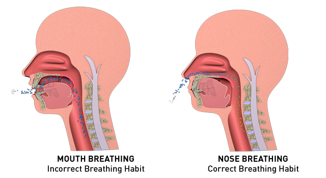 Mouth Breathing V Nose Breathing